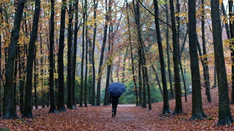 Переменная облачность и до +20 градусов: синоптики рассказали о погоде 4 октября