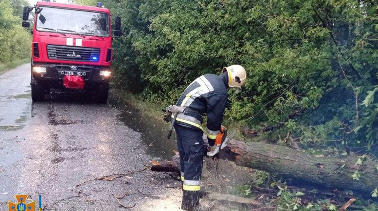 Непогода в Украине: ветер повалил деревья и оставил без света четыре области