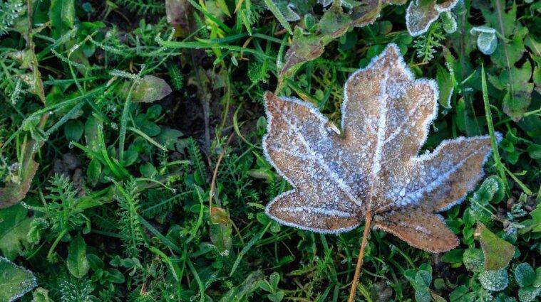 Прийдуть заморозки: якою буде погода в першій половині вересня