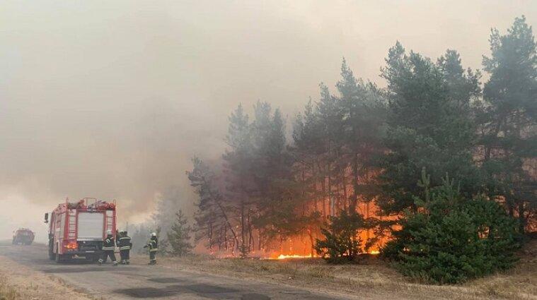 ДБР: Недбалість керівництва спричинила масштабні пожежі у Луганській області