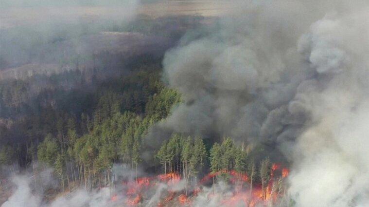 Пожары в Чернобыльской зоне нанесли ущерб на сумму 8 млрд грн
