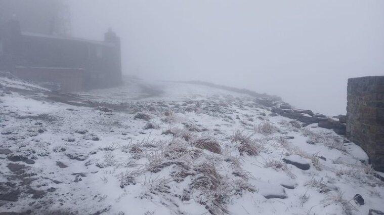 За день до літа в Карпатах випав сніг - фото