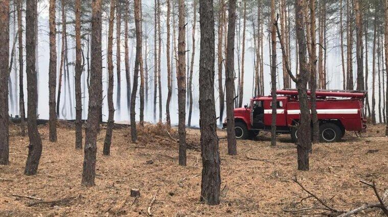 Біля Дніпра загорівся ліс: пожежники гасять вогонь