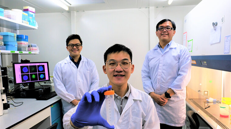 Вчені з Сінгапуру розробили метод боротьби з раком: відео