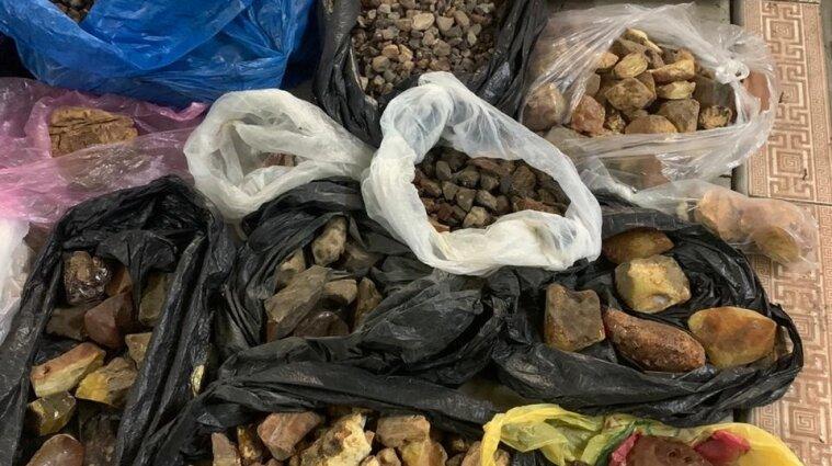 В Житомирской области пытались вывезти крупную партию янтаря в Восточную Азию - видео