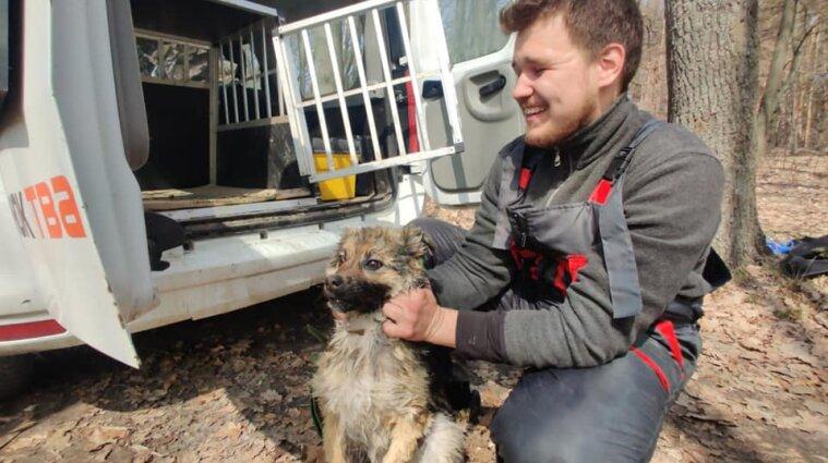 Тиждень сидів на кризі: у Харківській області врятували собаку
