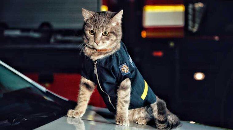 Спасатели показали служебного кота в форме ГСЧС