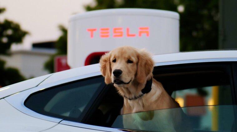 Tesla запровадила щомісячну передплату на сервіс допомоги водіям