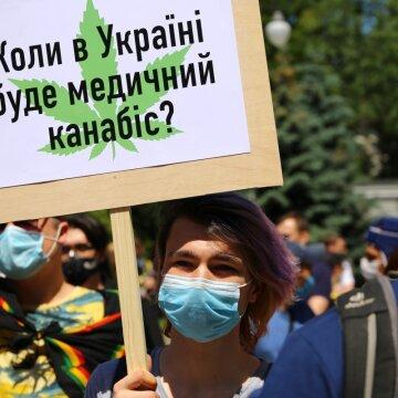 """Медичний канабіс в Україні: чому депутати злякалися конопляних плантацій та """"косячків"""""""