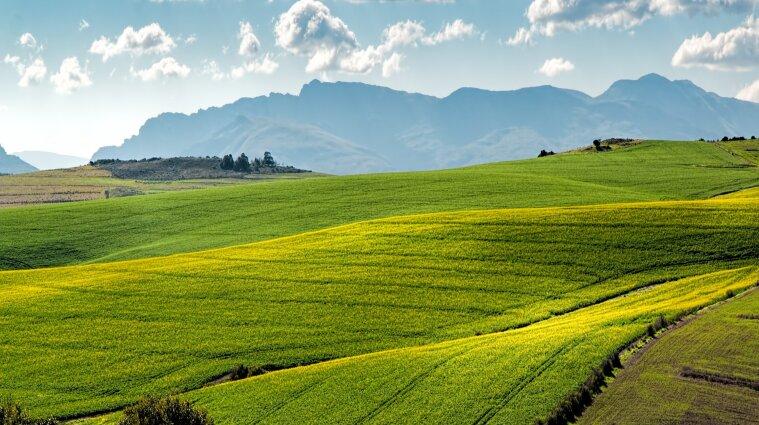 В Украине 6 млн га сельхозземель нуждаются в консервации - Минагрополитики