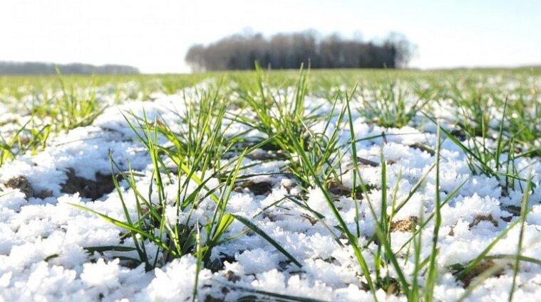 Синоптики прогнозируют холодную погоду в Украине до конца марта