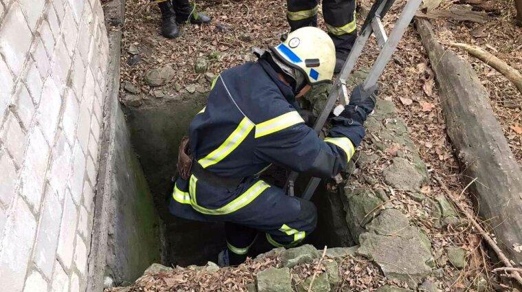 Надзвичайники врятували собаку, який впав у триметрову яму - фото