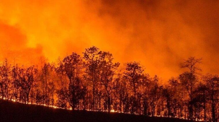 В Італії спалахнули лісові пожежі - оголосили надзвичайний стан
