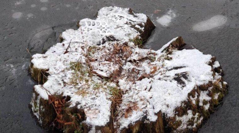 В Карпатах на горе Поп Иван выпал снег - фото