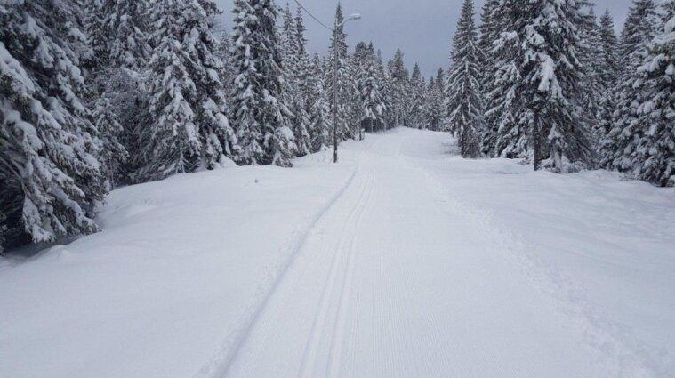 В Карпатах седьмой день подряд идет снег, ожидают схода лавин (видео)