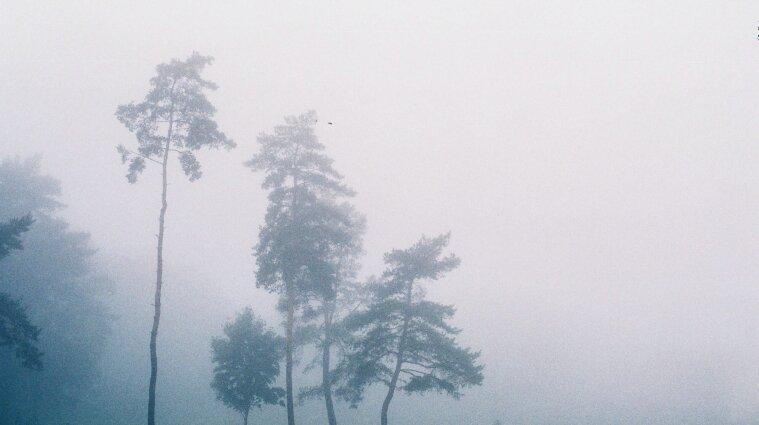 Туман и дождь: синоптики предупредили об ухудшении погодных условий