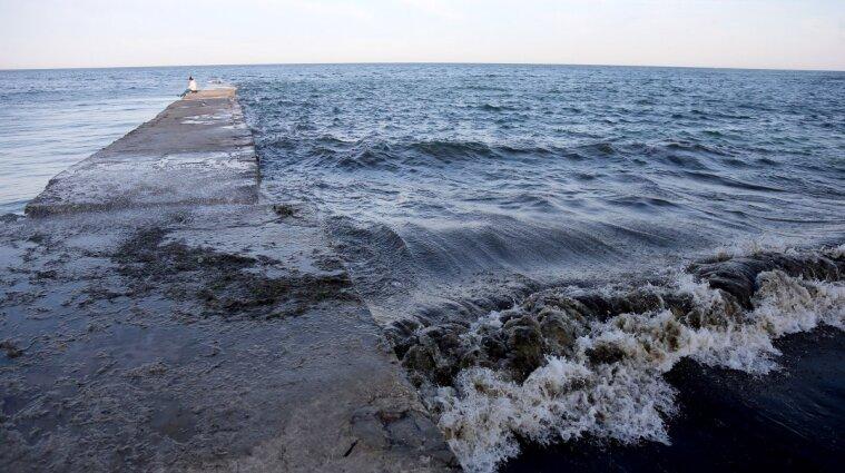 """Море в Одесі перетворилось на """"зелений борщ"""", а пляж вкрився нечистотами (відео)"""
