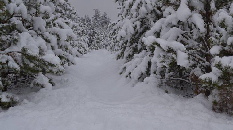 Штормове попередження: до снігопадів в Україні додасться сильний вітер