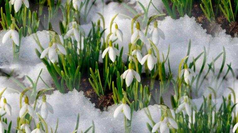 Похолодання і сніг: синоптики попередили про негоду в Україні