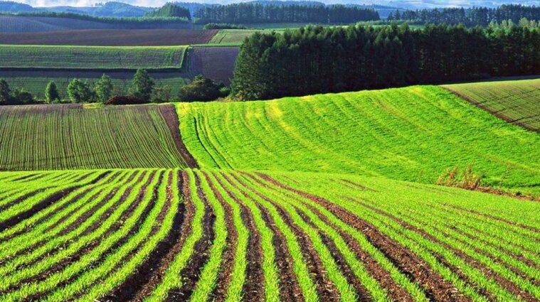 В Україні передадуть землі з державної власності у комунальну