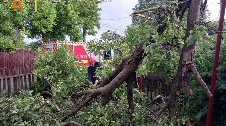 Более 220 населенных пунктов в Украине обесточила непогода