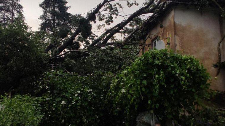 Буревій зніс водонапірну башту на Луганщині та позривав дахи з будинків