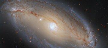 Hubble показал галактику в созвездии Весы - фото