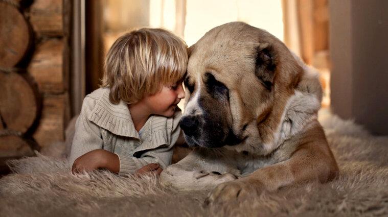 Науковці довели, що собака – найдавніший друг людини