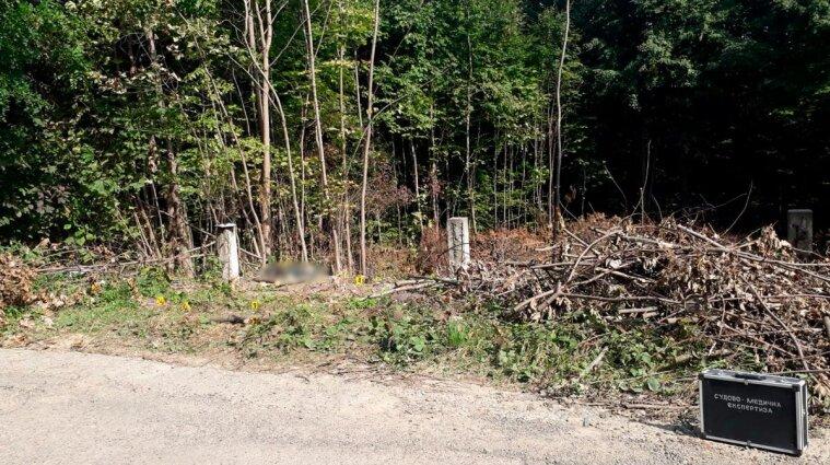 Поїхав купувати авто: тіло зниклого чоловіка знайшли у лісосмузі