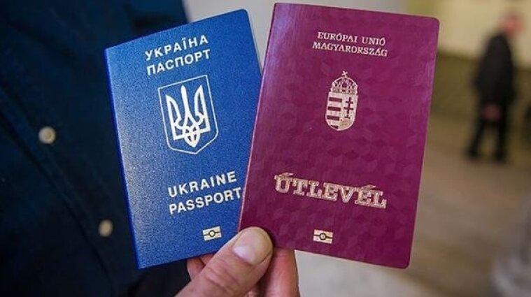Іноземні паспорти українців лише економічні, а не політичні - нардеп