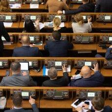 Законопроект о сокращении количества нардепов должны проголосовать в конце января - Совгиря