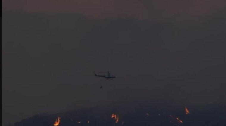 Кипр просит соседние страны помочь потушить лесной пожар