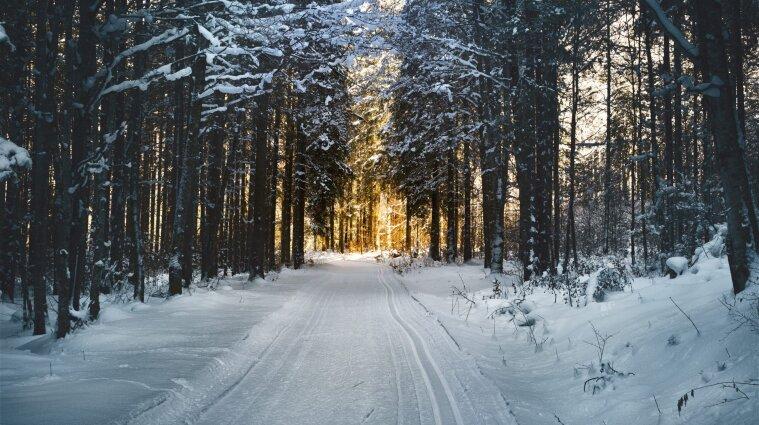 Синоптик спрогнозировал, когда ударят первые морозы и выпадет снег