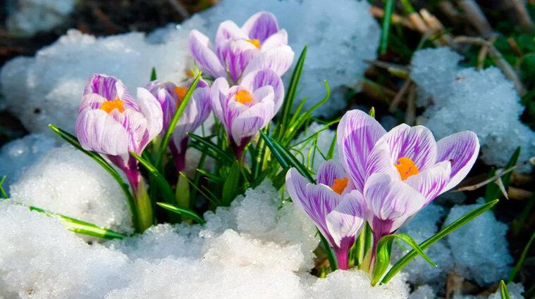 Мокрий сніг та холод - синоптики про погоду в Україні до кінця тижня
