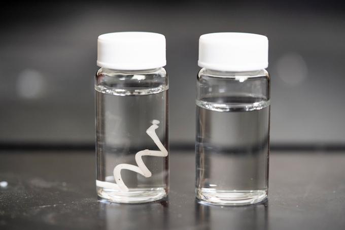 Пластик, що розкладається у воді та землі